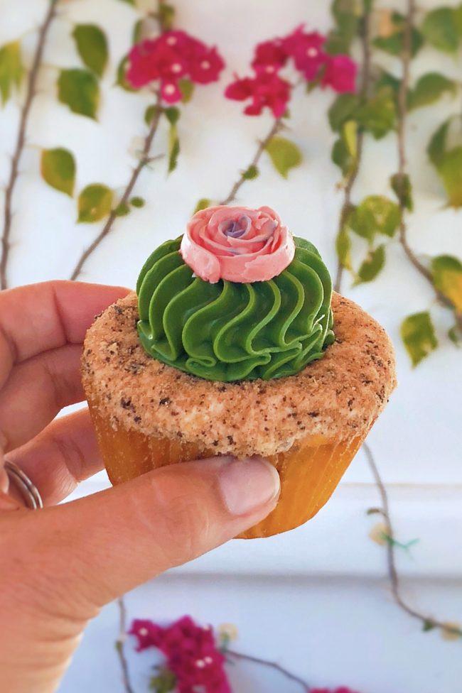 Adorable Succulent Cupcake