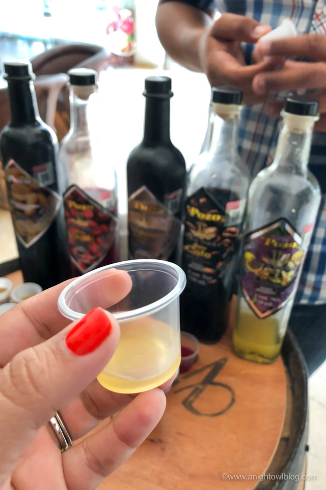 Looking for something fun to do during your cruise stop in Puerto Vallarta? Check out our thoughts on the Puerto Vallarta Shore Excursion: Tequila Show, Margarita Madness, Tasting & Tacos!