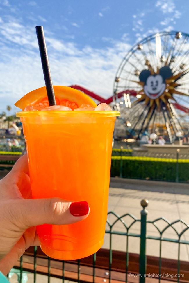 Aperol Cocktail from Garlic Kissed | From Mickey-Shaped Macarons to the Carbonara Garlic Mac & Cheese, there are so many great bites and brews to discover at the Disney California Adventure Food and Wine Festival!