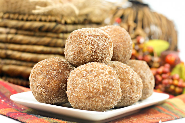 The perfect breakfast or snack for fall, these Easy Baked Pumpkin Donut Holes pair perfectly with your PSL or warm apple cider!